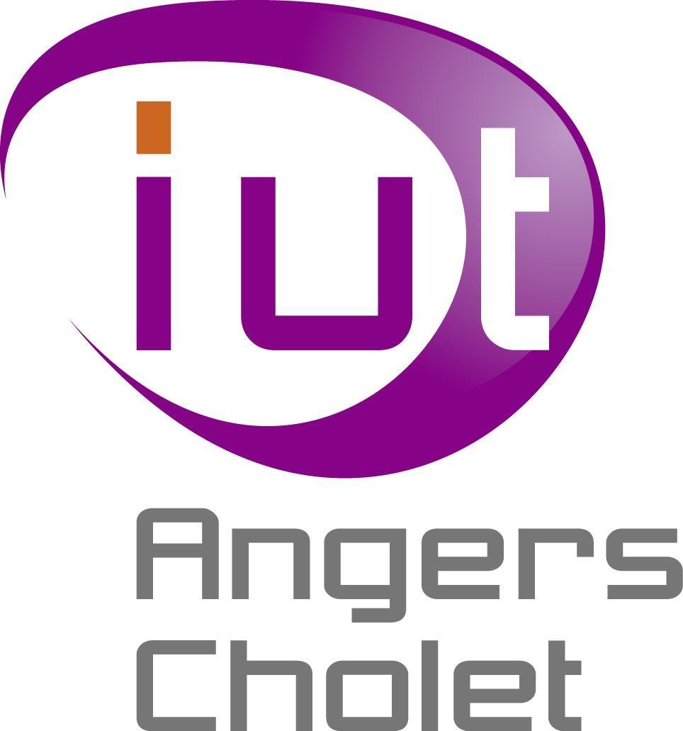 Iut D Angers N 17 Au Classement Licences Negociation Vente